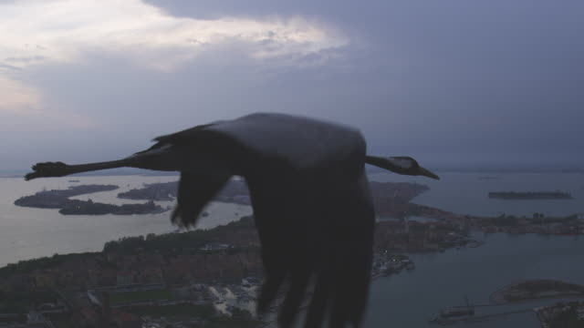 Air to Air MS flying with Common Crane over Venice HA with lagoon in background on cloudy evening TU to second crane