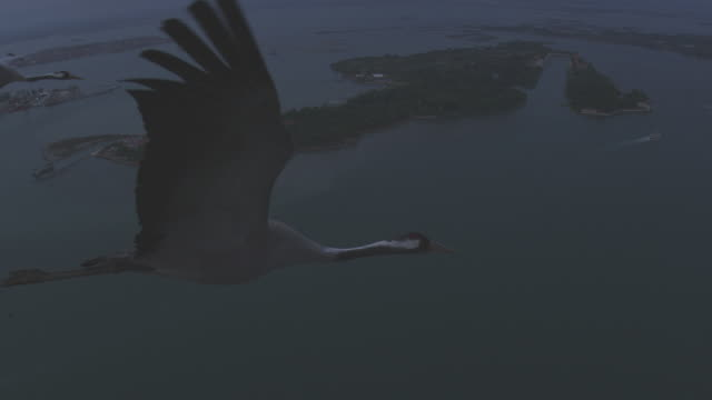 air to air ms into 2 shot into cu flying with common crane over lagoon in cloudy evening  - air to air shot stock videos & royalty-free footage