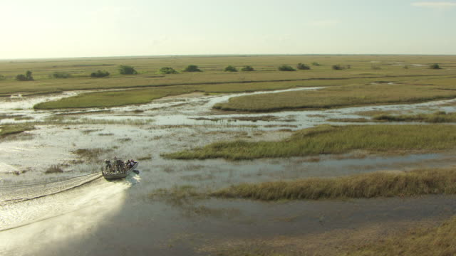 MS AERIAL TS airboat as picks up speed through everglades / Florida, United States
