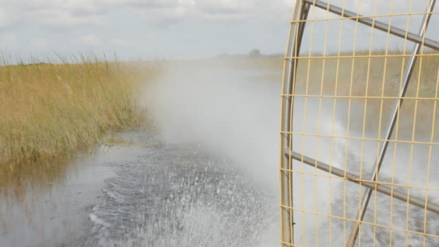 airboat running at everglades national park - sumpf stock-videos und b-roll-filmmaterial