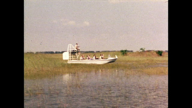 airboat travels through reeds in florida everglades; 1980 - southern usa stock videos & royalty-free footage