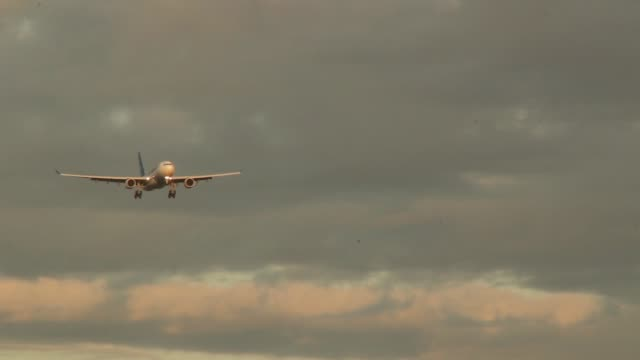 airbus 310 flying low towards the viewer - air vehicle stock videos & royalty-free footage