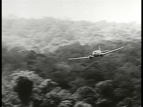 aircraft flying over jungle w/ cargo being dropped ms indigenous people looking nervous parachutes w/ packages attached landing in jungle indigenous... - newsreel stock videos & royalty-free footage