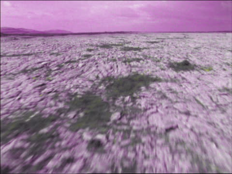 PURPLE AERIAL aircraft point of view desolate rocky landscape / The Burren, County Clare, Ireland