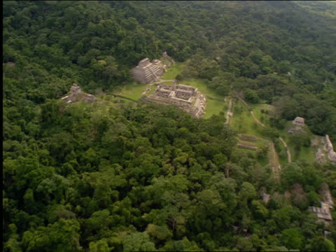 aerial aircraft point of view over palenque ruins surrounded by forest / chiapas, mexico - chiapas bildbanksvideor och videomaterial från bakom kulisserna