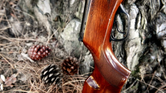 SERIES: Airgun shooting