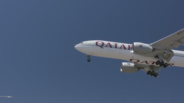 airline carrier - qatar bildbanksvideor och videomaterial från bakom kulisserna