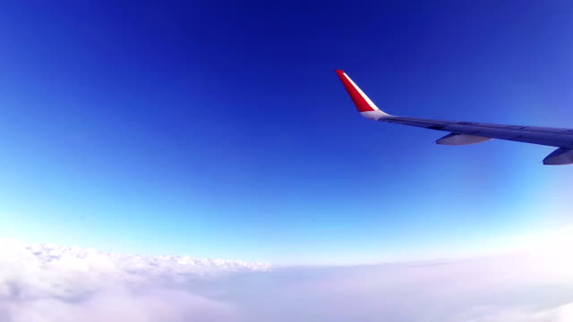 vídeos de stock e filmes b-roll de airplane cruising flight - viagem de negócios