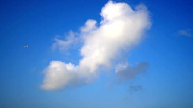 airplane flying through clouds - cumulus cloud stock videos & royalty-free footage