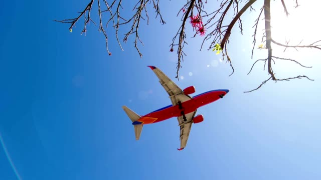 SLO MO Airplane landing at LAX airport