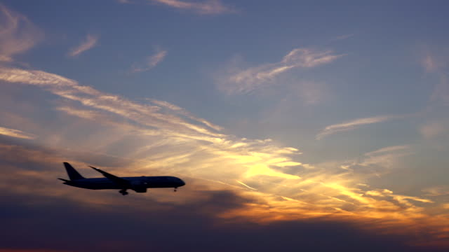 airplane landing at sunset - in silhouette stock videos & royalty-free footage
