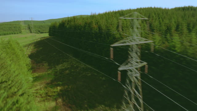 aerial airplane point of view over powerlines + pine forest / loch awe, argyll, western highlands, scotland - power line stock videos & royalty-free footage