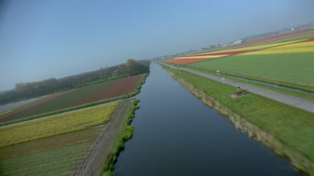 AERIAL airplane point of view over river + multicolored flower fields / Leiden, western Holland