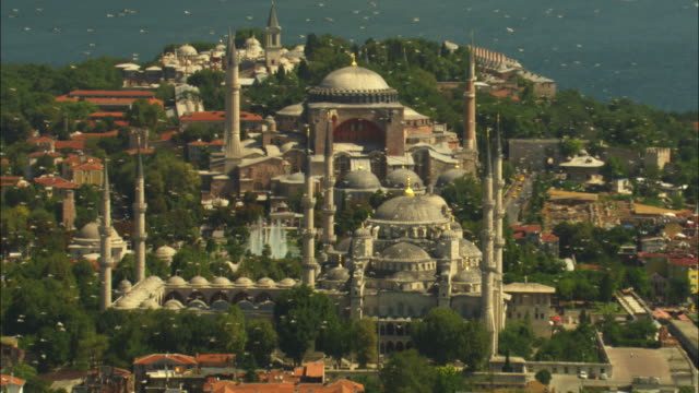 air-to-air pan with flock of white storks flying over hagia sofia and suleymaniye mosques in istanbul zo to show city - hagia sophia istanbul stock videos & royalty-free footage