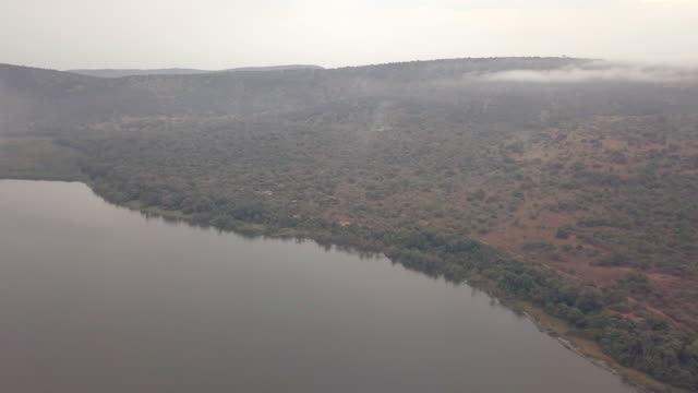 akagera national park - national park stock videos & royalty-free footage