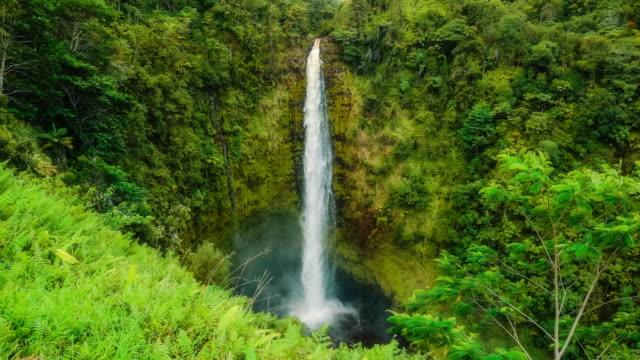 vídeos de stock e filmes b-roll de akaka falls - cascata