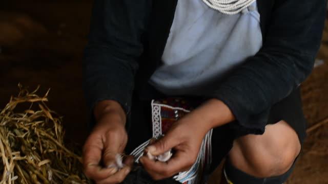 vídeos de stock e filmes b-roll de cu tu akha women pealing garlic / kungtung, myanmar - só uma mulher de idade mediana