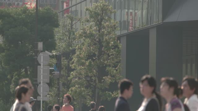 vídeos y material grabado en eventos de stock de akibahara pedestrian area. tokyo, japan - domingo