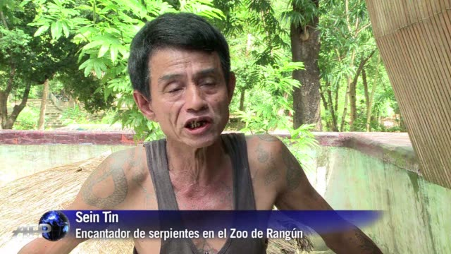 Al encantador de serpientes del Zoo de Rangun sus tatuajes le protegen de las mordeduras de serpiente en una Birmania con una de las tasas de...