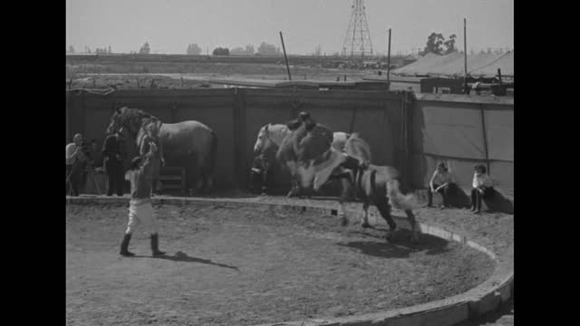 al g. barnes circus / cristiani family, 4 bareback horse riders and trainer, practice / women in costume applaud / 10 women watch and applaud... - black and white stock videos & royalty-free footage