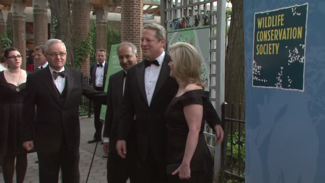 al gore tipper gore at the the wildlife conservation society safari india gala at new york ny - tipper gore stock videos & royalty-free footage