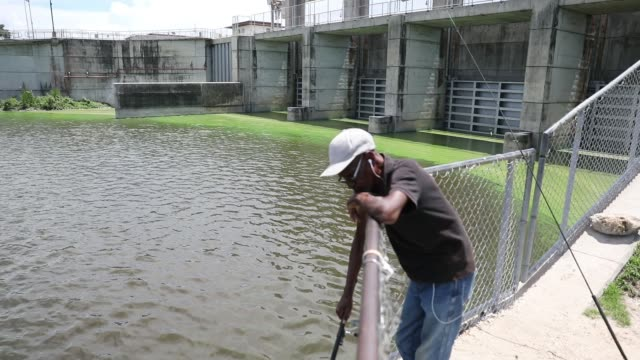 al mclemore fishes near the green algae blooms that are seen at the port mayaca lock and dam on lake okeechobee on july 10 2018 in port mayaca... - florida us state stock videos and b-roll footage