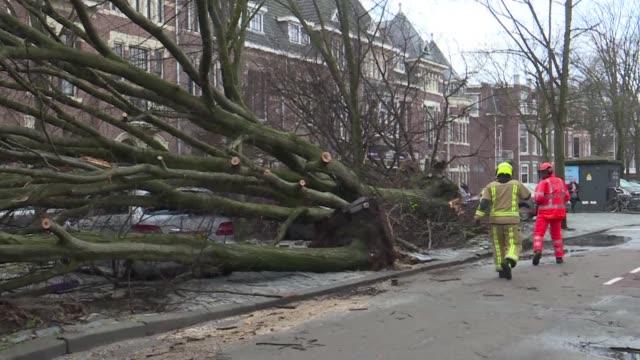 al menos ocho personas murieron el jueves en el norte de europa debido a los violentos vientos que provocaron tambien la suspension de servicios... - transporte stock videos & royalty-free footage