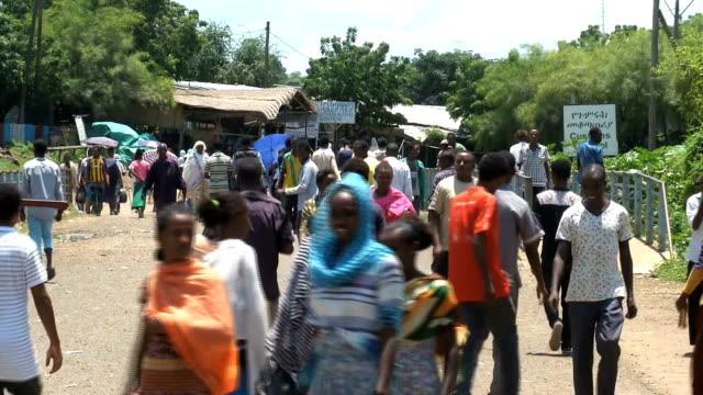 al qadarif ethiopian refugees - ethiopia stock videos & royalty-free footage