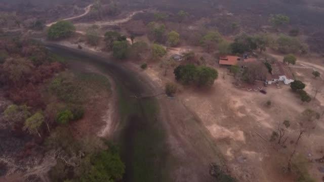vídeos de stock, filmes e b-roll de al verse impotente mientras el fuego calcinaba la vegetación alrededor de su posada ecoturística en el pantanal brasileño, domingas ribeiro se sentó... - ecoturismo