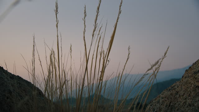 alabama hills sunrise california - californian sierra nevada stock videos & royalty-free footage