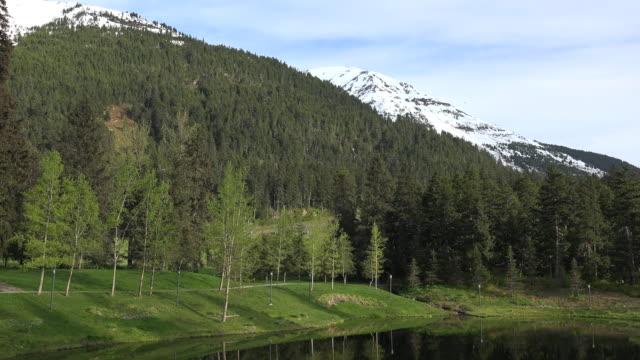 Alaska Alyeska pond and forested mountain zoom