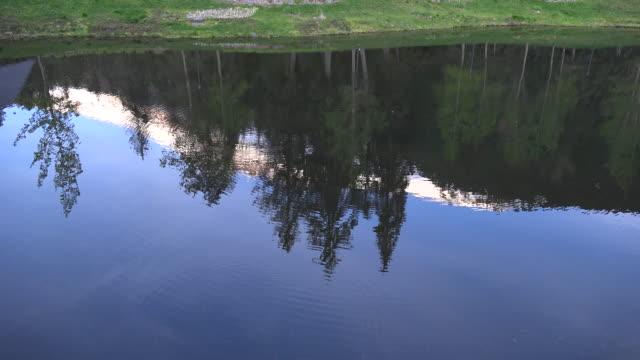 Alaska Alyeska reflection of trees and mountain