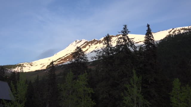 Alaska Alyeska trees and snowcapped mountain zoom in