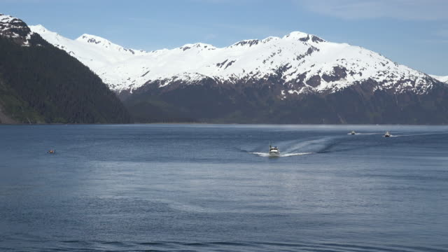 alaska boats approaching whittier - prince william sound stock videos and b-roll footage