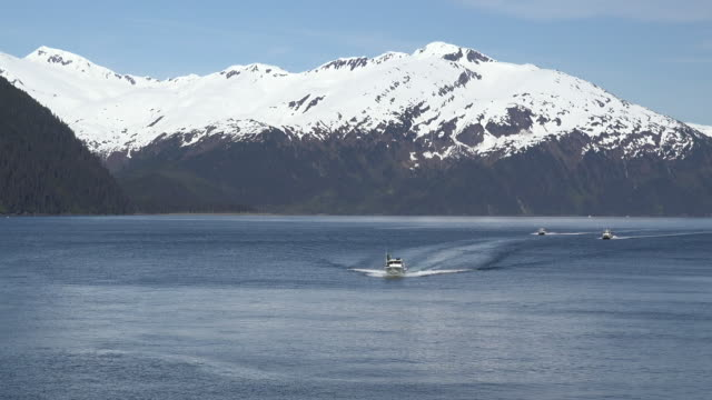 alaska boats approaching whittier zoom in - prince william stock videos & royalty-free footage