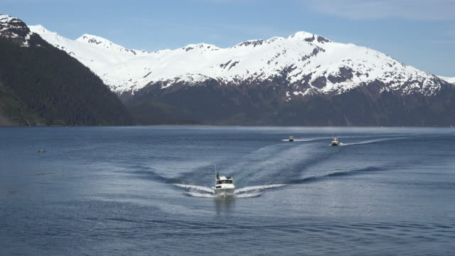 alaska boats in a row with wakes - prince william sound stock videos and b-roll footage