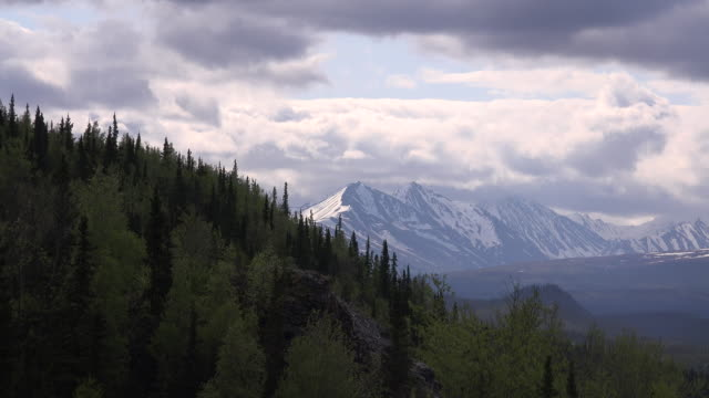 alaska denali distant mountains and slope - denali national park stock videos & royalty-free footage