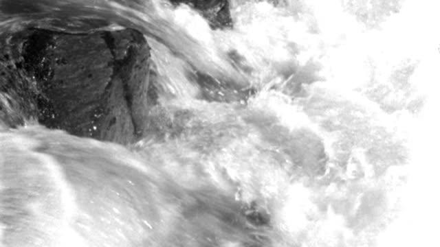 vídeos y material grabado en eventos de stock de dx - alaska - fish - salmon upstream in rapids - c.s. salmon struggling upstream against rapids - b&w. - grupo mediano de animales