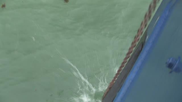 vídeos de stock e filmes b-roll de cu, usa, alaska, katmai national park, boat anchor being dropped into water - ancora