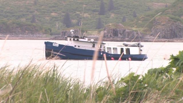 ms, usa, alaska, katmai national park, boat anchored in bay, grass in foreground - ankrad bildbanksvideor och videomaterial från bakom kulisserna