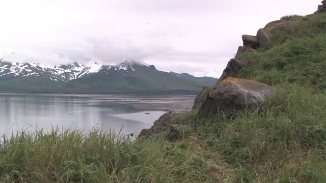 ms, usa, alaska, katmai national park, grassy hummock, snow capped mountain in background - stationary process plate stock videos & royalty-free footage