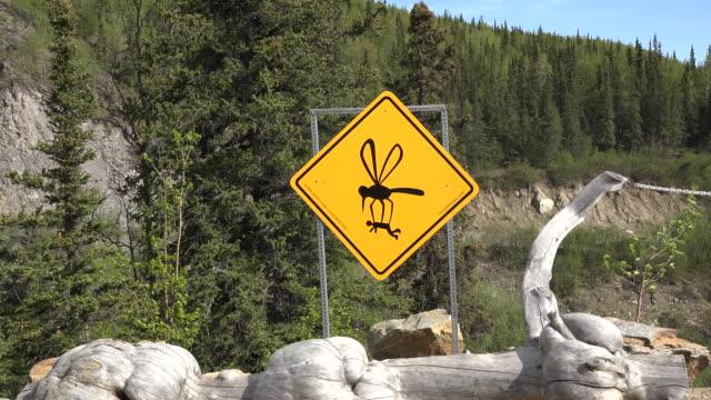 alaska mosquito sign zoom in - アラスカ点の映像素材/bロール