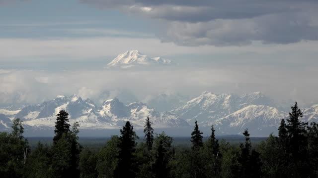 alaska mount denali rises over range - denali national park stock videos & royalty-free footage
