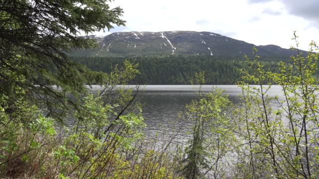 Alaska ranger walks by lake