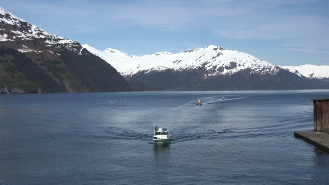 alaska three boats in a row at whittier - prince william stock videos & royalty-free footage