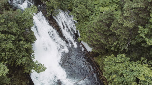 UHD 4K: Alaska waterfall in the forest