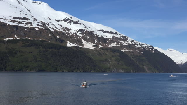 alaska whittier boats motoring zoom in - prince william stock videos & royalty-free footage