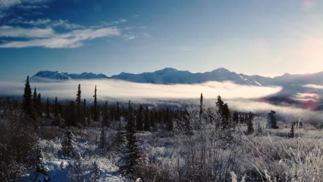Alaskan ice fog landscape