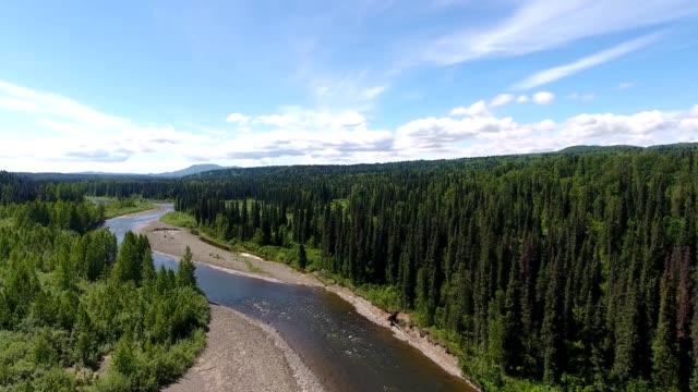 vídeos de stock e filmes b-roll de alaskan river - alasca