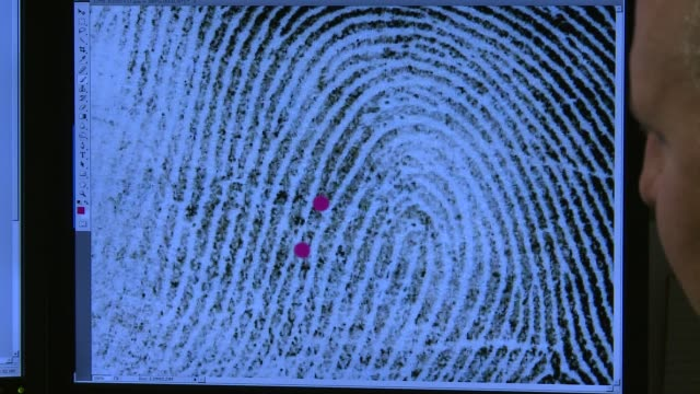 albany state police crime laboratory an expert works with a fingerprint on a screen at albany state police crime laboratory on october 29 2013 in... - kriminaltechnik stock-videos und b-roll-filmmaterial